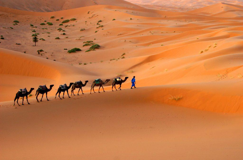מדבר סהרה - טיול צילום למרוקו
